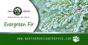 Candle - Evergreen Fir - Label