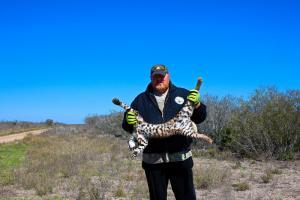 Jeff Dunlap with Bobcat.
