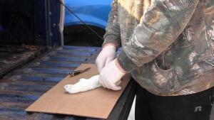 Jeff Dunlap - Weasel Skinning