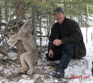 Lynx Gland - Forsyth Animal Lures - Stan Forsyth