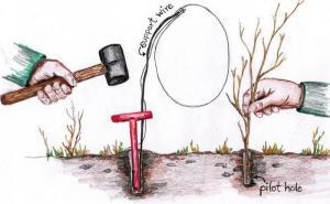 Redman Snare Tool Sketch