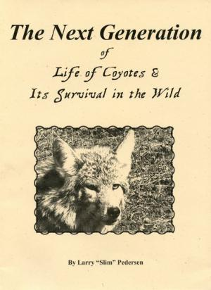 Pedersen - The Next Generation Of Life Of Coyotes & Its Survival In The Wild