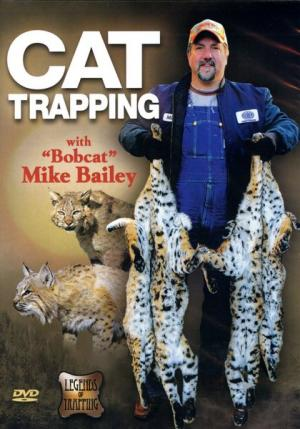 Bailey - Cat Trapping