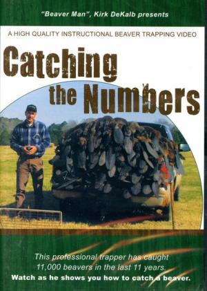 Dekalb - Catching The Numbers