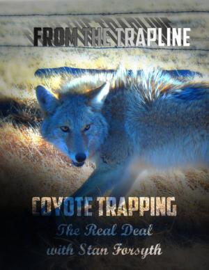 Forsyth DVD - From the Trapline - Coyote Trapping