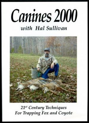 Sullivan - Canines 2000 - DVD by Hal Sullivan