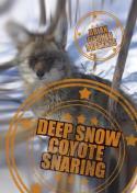 Fischer - Deep Snow Coyote Snaring - by Brian Fischer