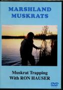 Hauser - Marshland Muskrats - by Ron Hauser