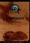 Probst - Beaverin' - by Alan Probst