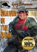 Schumann - Beaver in the Bank - by Gary Schumann